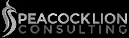 Société de Conseils en Transformation Digitale, Organisations, Processus, Marketing, CRM & Systèmes d'Informations